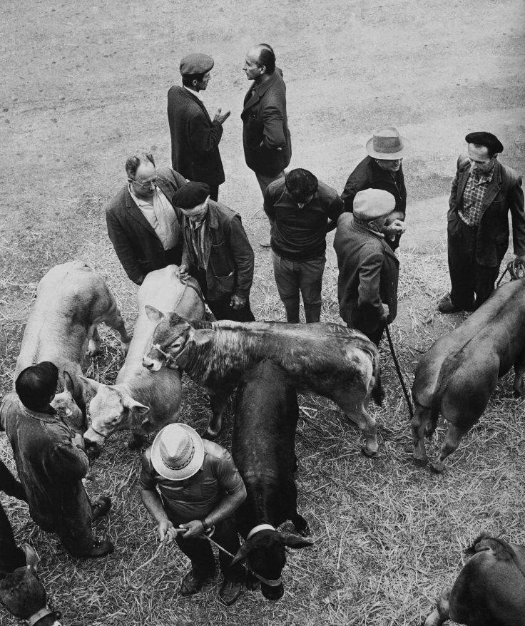 marche-aux-veaux-1978